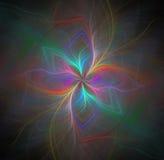 与彩虹的抽象黑背景上色了花或光芒 库存图片