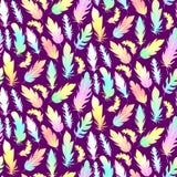与彩虹羽毛的无缝的样式在黑暗的背景 皇族释放例证