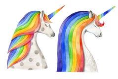 与彩虹鬃毛和垫铁的两只独角兽 画开花的河结构树水彩绕的银行 库存例证