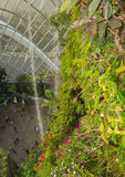 与很多花和植物的人为岩石以巨大的绿色 免版税图库摄影