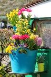 与很多花的晴朗的大阳台 库存照片