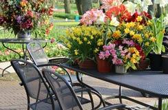 与很多花的晴朗的大阳台 免版税图库摄影