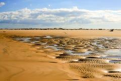 与微型水灾地区的金黄沙丘 免版税库存照片