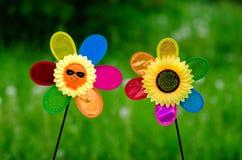 与微笑面孔的美味的向日葵 库存照片