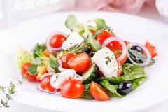 与微绿叶的开胃和吸引的希腊沙拉 免版税库存照片