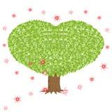 与心形的冠的绿色树 免版税库存照片
