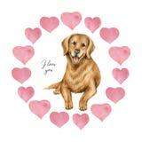 与心脏和狗猎犬的水彩传染媒介圆的框架 库存例证