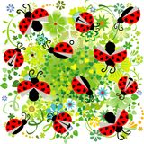 与心脏和花无缝的样式-传染媒介的瓢虫 免版税库存照片