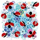 与心脏和花纹花样的瓢虫 免版税图库摄影