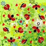 与心脏和花纹花样的瓢虫 图库摄影