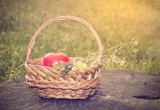与心脏形状的春天篮子 库存图片