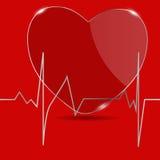 与心脏的心电图。传染媒介例证。 免版税库存图片