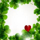 与心脏的新鲜的叶子三叶草在招标弄脏了背景 库存照片