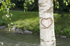 与心脏的树在河边雕刻了  免版税库存图片
