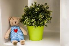 与心脏的玩具熊 免版税图库摄影