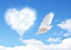 与心脏的蓝天塑造云彩和鸠 免版税图库摄影