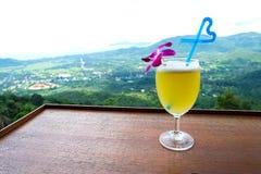与心脏秸杆的菠萝汁和苏梅岛海岛观看背景 图库摄影
