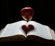 与心脏阴影的一个苹果 免版税库存图片