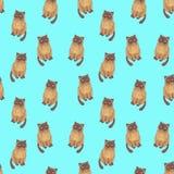 与忧郁猫的样式 免版税库存图片