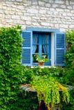 与快门和常春藤的一个闭合的窗口在老墙壁上 库存图片