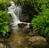 与急流和小瀑布的森林小河 库存照片