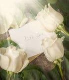 与情书的看板卡和在木表的空白玫瑰 免版税库存图片
