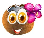 与愉快的面孔的椰子 皇族释放例证