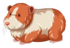 与愉快的面孔的毛茸的仓鼠 库存例证