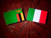 与意大利旗子的赞比亚旗子在被隔绝的树桩 库存例证