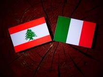 与意大利旗子的黎巴嫩旗子在被隔绝的树桩 皇族释放例证