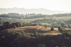 与意大利秋天农田的壮观的看法在托斯卡纳 库存照片