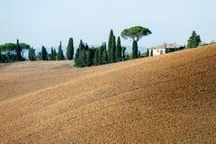 与意大利秋天领域和山的壮观的看法在tus 库存照片