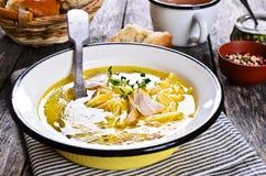 与意大利面食的汤 免版税库存照片