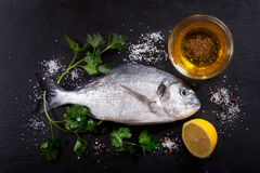 与成份的鲜鱼dorado烹调的,顶视图 免版税库存图片
