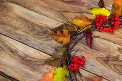 与成熟花楸浆果门花圈,拷贝空间的秋天背景 免版税库存图片