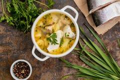 与成份和香料的鲜鱼汤烹调的 木背景 顶视图 特写镜头 库存图片