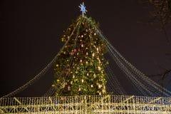 与户外光的圣诞树在晚上在基辅 背景的索菲娅大教堂 庆祝新年度 图库摄影