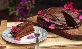 与户外裁减片断的巧克力蛋糕 库存照片
