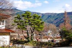 与房子、树和小山的日本冬天风景 库存照片