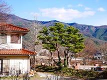 与房子、树和小山的日本冬天风景 免版税库存照片