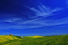 与房子和明白深蓝天空与白色云彩,托斯卡纳,意大利的黄色花田 免版税库存照片