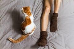 与所有者的猫在床上 库存照片