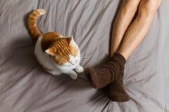 与所有者的猫在床上 免版税库存图片