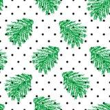 与手凹道云杉的圣诞节圆点无缝的样式分支 库存图片