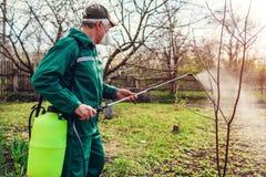与手工杀虫剂喷雾器的农夫喷洒的树反对昆虫在春天庭院里 农业和从事园艺 库存图片