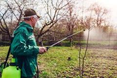 与手工杀虫剂喷雾器的农夫喷洒的树反对昆虫在春天庭院里 农业和从事园艺 免版税库存图片