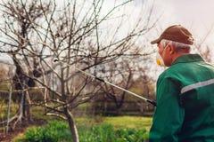 与手工杀虫剂喷雾器的农夫喷洒的树反对昆虫在春天庭院里 农业和从事园艺 库存照片