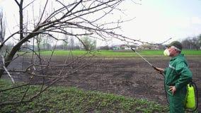 与手工杀虫剂喷雾器的农夫喷洒的树反对昆虫在春天庭院里 农业和从事园艺 股票录像