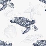 与手拉的乌龟的无缝的样式 背景峡湾光芒海运星期日 背景几何老装饰品纸张葡萄酒 向量例证