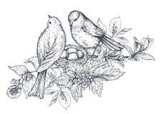 与手拉的开花分支和鸟的花束 皇族释放例证